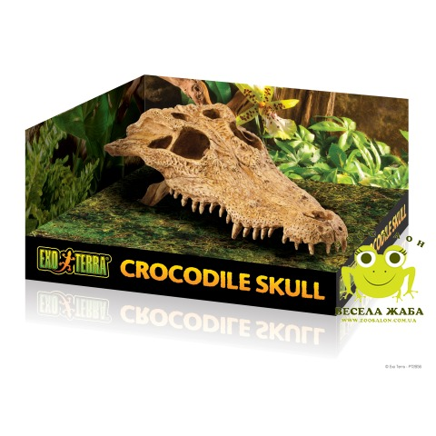 Декорация для террариума череп крокодила Exo Terra Crocodile Skull