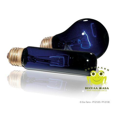 Лампа лунного света ExoTerra Night Glo