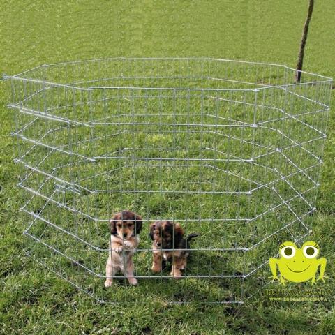 Вольер для собак Trixie 60х91см