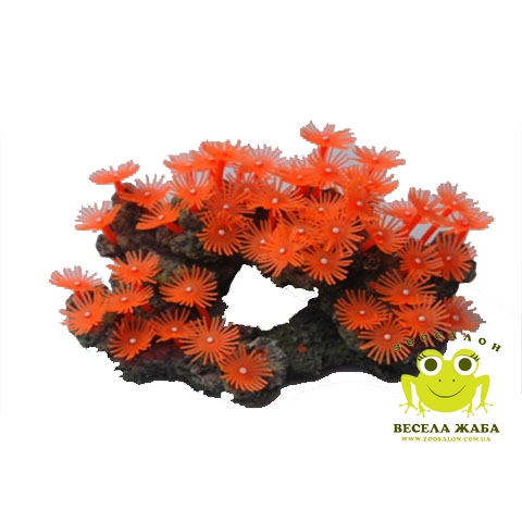 Коралл SH 308