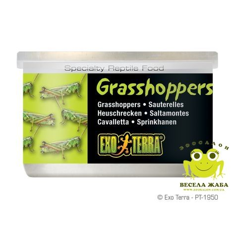 Консервированный корм Кузнечики ExoTerra Grasshoppers 34 гр