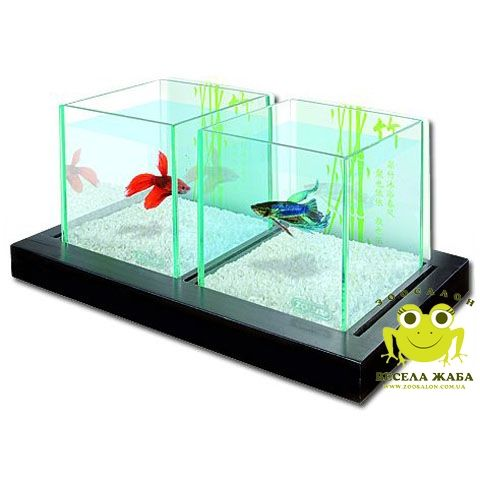 Нано аквариум Zolux Betta Bamboo Duo 2 по 1,8 литра