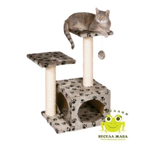 У кота темная моча - Вопросы ветеринару