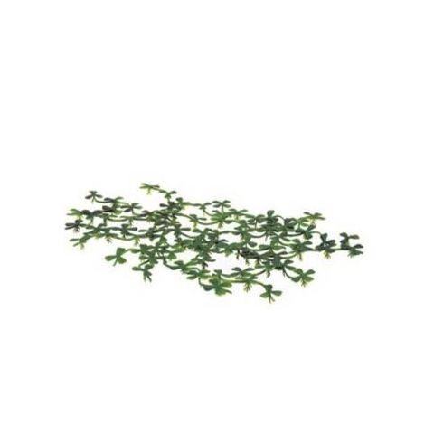 Искусственное растение ExoTerra Duck Weed