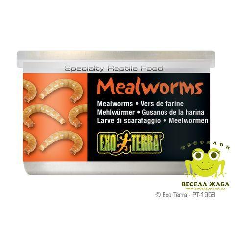 Консервированный корм Хрущак мучной ExoTerra Mealworms 34 гр